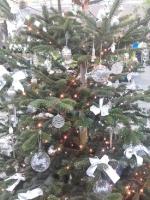 Kreismeisterschaft im Weihnachtsbaumschmücken 11.12.2016