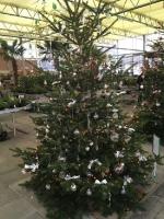 Kreismeisterschaft im Weihnachtsbaumschmücken 11